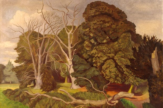 'The Fallen Tree', 1951, by John Nash