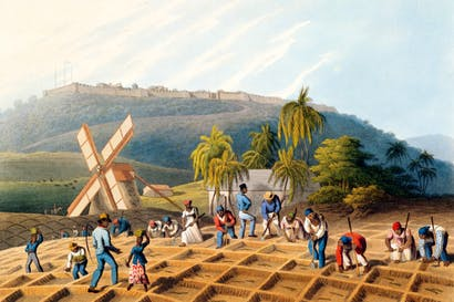 Slaves planting cane cuttings in Antigua, 1823, by William Clark