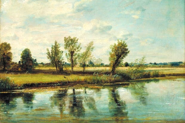 'Water-meadows near Salisbury', 1829/30, by John Constable