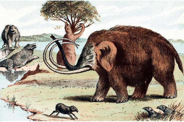 The unentertaining fact is that resurrecting animals that died out 65 million years ago is likely to remain far beyond the bounds of possibility for a very long time to come