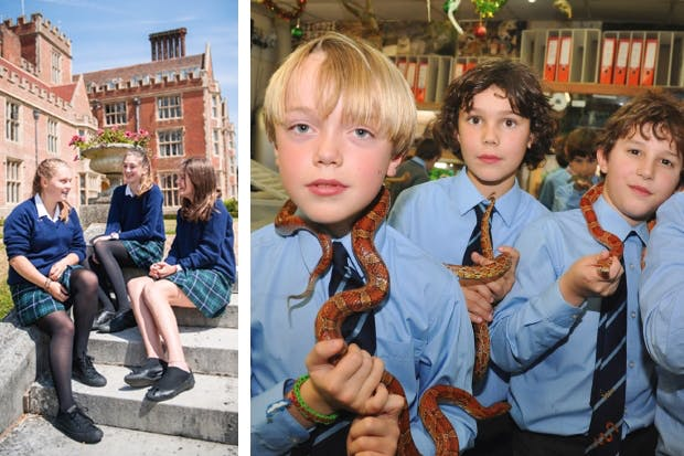Boys will be boys, girls will be girls, snakes will be snakes: Benenden, left, and Papplewick