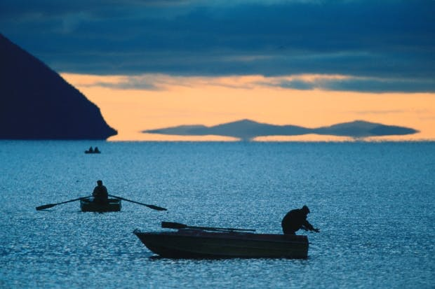 Fishing for sturgeon at the mouth of the Amur River in the Okhotsk Sea