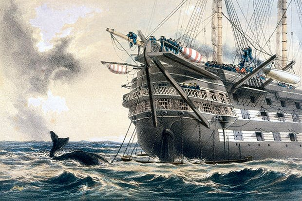 HMS Agamemnon lays the first Atlantic telegraph cable between Trinity Bay and Valentia Island