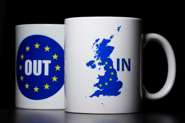 Trying to smear Europhiles just makes me more pro-EU