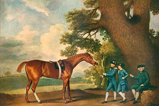 George Stubbs's painting of Eclipse, the outstanding English 18th-century thoroughbred