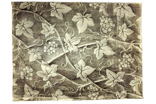 Who let as byatt publish peacock and vine the spectator designs for wallpaper with a vine pattern by fortuny sisterspd