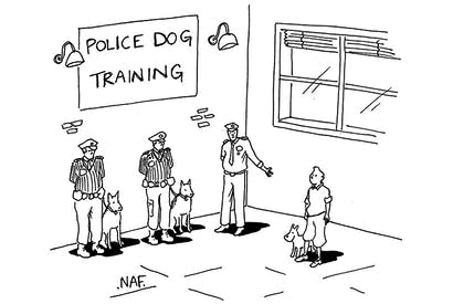 'Today's guest dog is someone who's had lots of experience in tackling and apprehending assailants.'