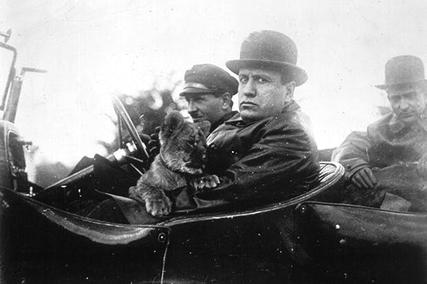 Would you recognise this face? Mussolini back in 1924, on a drive with his pet lion cub, Ras