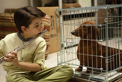 Keaton Nigel Cooke as Remi in 'Wiener-Dog'