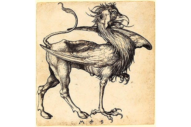 'The Griffin' by Martin Schongauer (15th-century engraving)