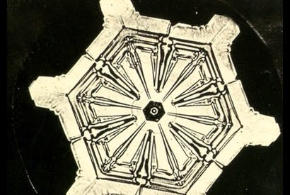 'Snowcrystals', c.1903–10, by Wilson A. Bentley, who was the first person to photograph a single snowflake Paul Keegan