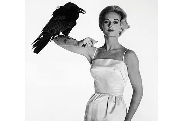 Tippi Hedren in a publicity still for The Birds