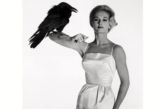 Tippi Hedren in a publicity still for The Birds