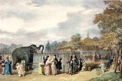 Regent's Park Zoological Gardens in 1835