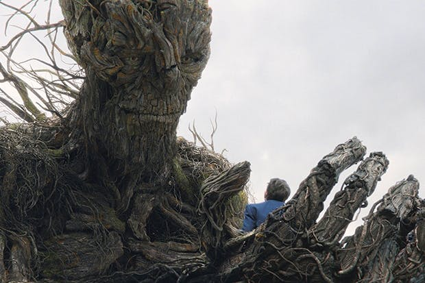 Yew and me: Lewis MacDougall, as Conor, and the tree monster