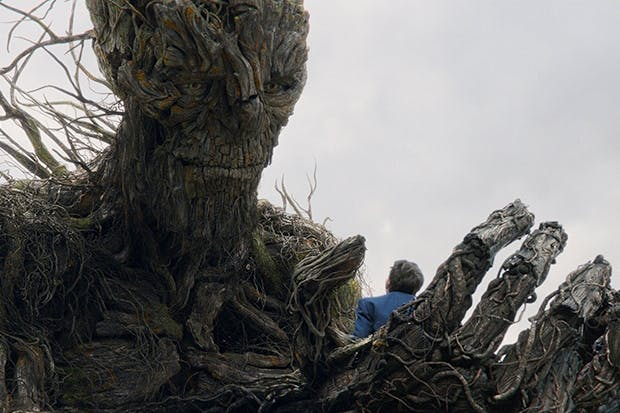 Ally Auto Login >> All bark and no bite: A Monster Calls reviewed | The Spectator