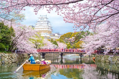 Party time... blossoms at Himeji Castle in Japan