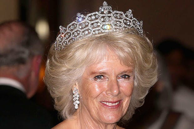 The Case For Queen Camilla The Spectator