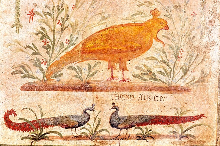 Sign for a thermopolium (taverna) in Pompeii, depicting a phoenix, with the inscription 'Phoenix Felix et Tu' – 'the Phoenix is happy (or lucky) – and you!'