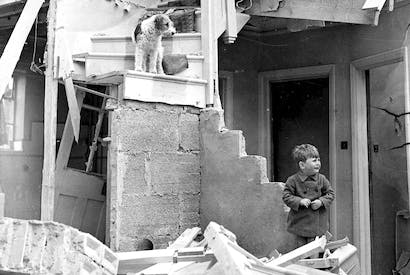 One that got away: a dog with his young owner after a night raid on Hendon, May 1941