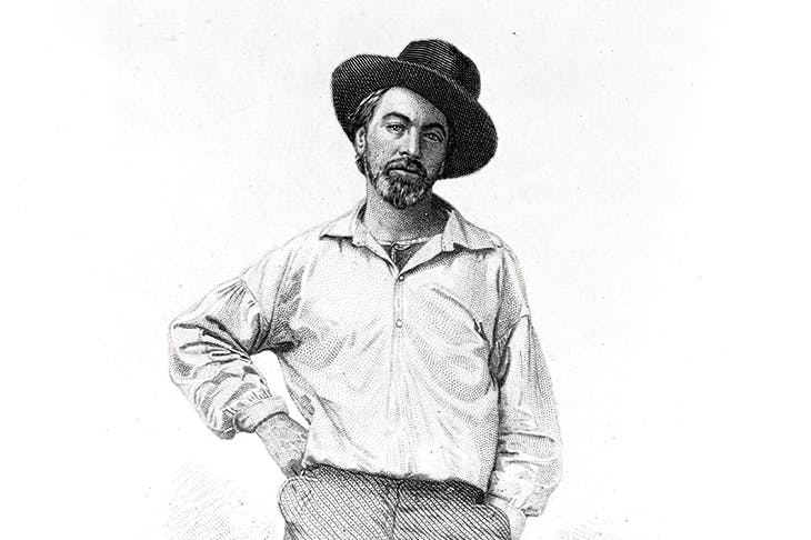 Walt Whitman, aged 35, as he appeared in the first edition of Leaves of Grass