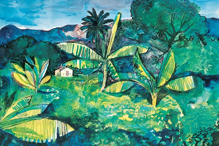 'Landscape Near Kingston, Jamaica', 1950, by John Minton
