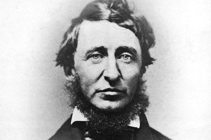 Thoreau: the poet-naturalist and political radical