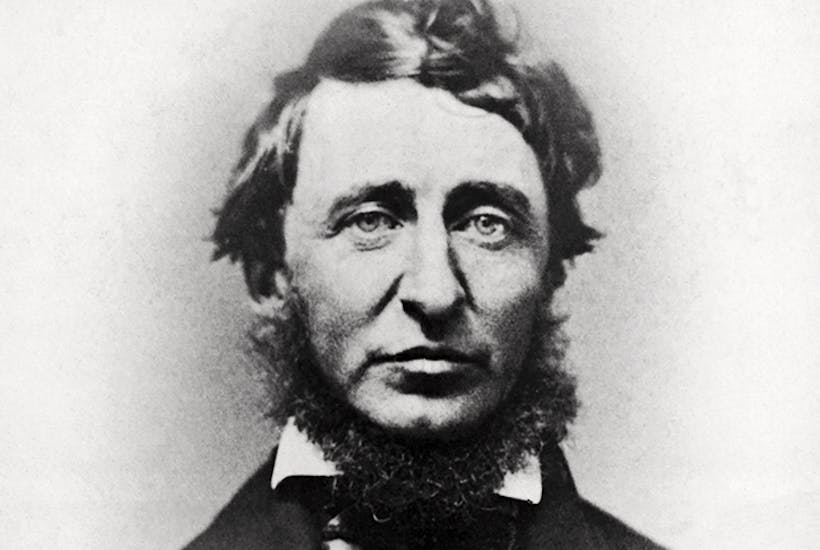 The Two Sides Of Henry David Thoreau The Spectator
