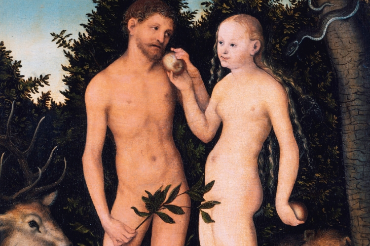 The 'biography' of the creation myth: The Rise and Fall of Adam and Eve reviewed