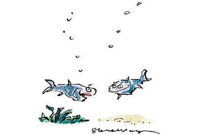 'He has a very dry sense of humour for a fish...'