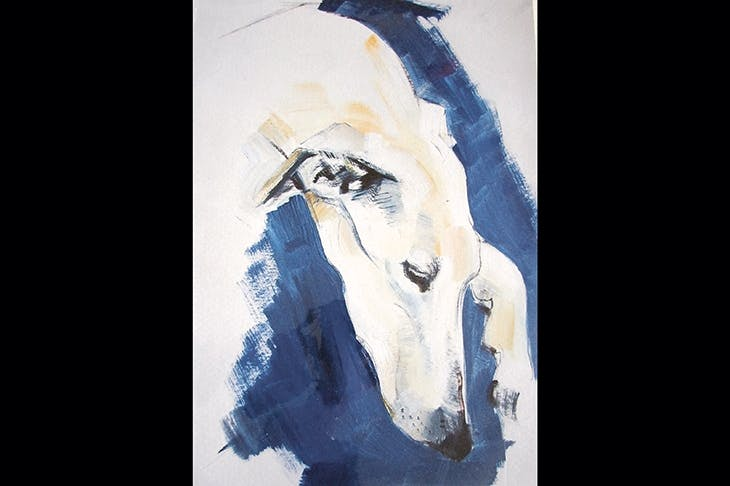 Sally Muir marvellously captures the particular hang of a hound's head