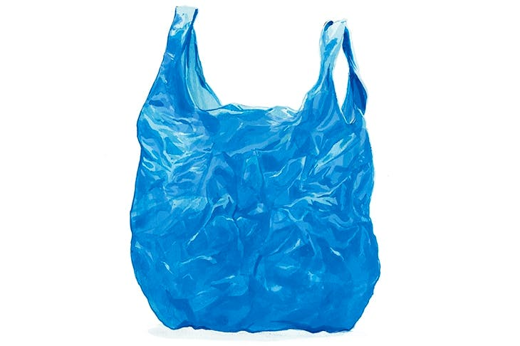 no plastic bags the influence Terms of jobs lost, has successfully influenced consumer behaviour, and is to this   the regulations do not distinguish between biodegradable plastic bags and.