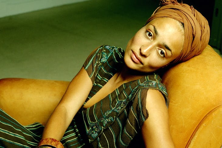 Zadie Smith: attentive, thoughtful and original