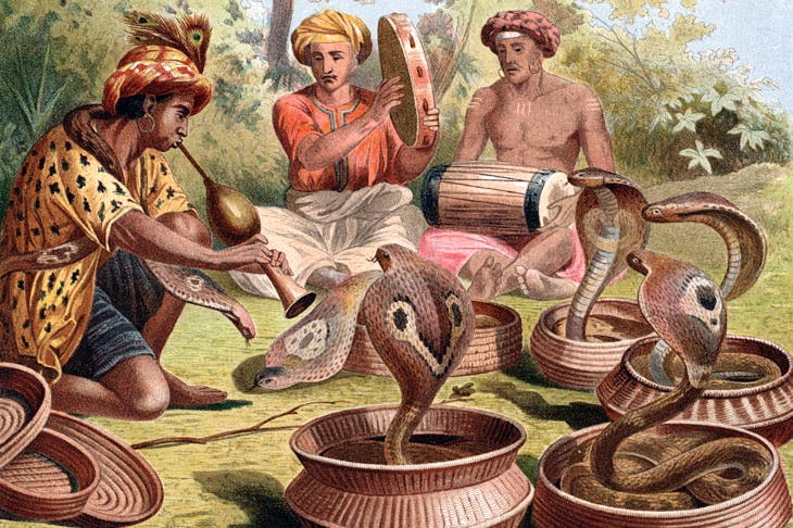 A 19th-century engraving by Alfred Edmund Brehm of Indian snake-charmers
