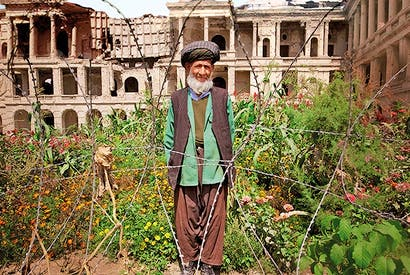 Mohammed Kabir, aged 105, in a garden he created in the courtyard of the ruined Darulaman Palace in Kabul for the soldiers stationed there