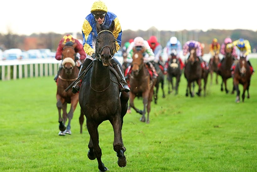 DONCASTER, ENGLAND - NOVEMBER 07: Jockey George Baker riding Litigant leads the field to win the Betfred November Handicap Stakes on November 7, 2015 in Doncaster, England. (Photo by Daniel Smith/Getty Images)