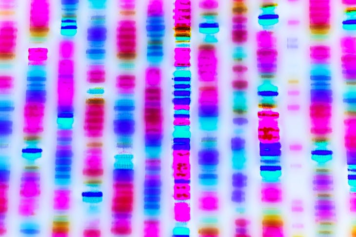 Touchlight Genetics has the capability to make DNA products 'ten times cheaper and ten times faster'