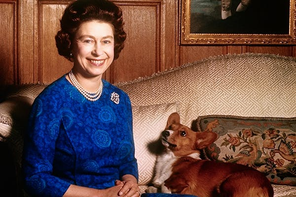 All mothers should receive Penny Junor's book on the Queen's corgis for Christmas. [Getty Images]