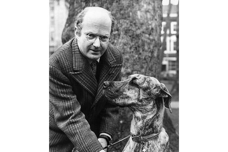 Auberon Waugh when standing for the Dog Lovers' Party against Jeremy Thorpe in the 1979 general election. Credit: Getty Images