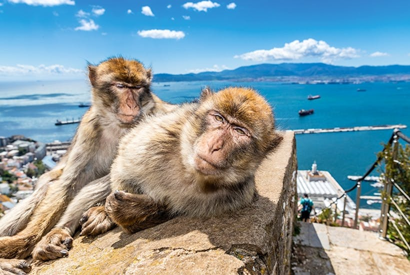 Gibraltar, the rock of ages past | The Spectator