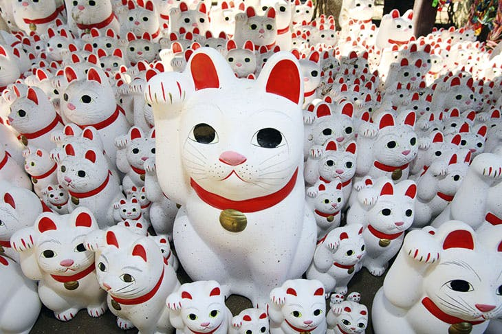 Maneki-neko at the Gotokuji Temple in Tokyo. A common Japanese talisman thought to bring good luck to its owner, the 'welcoming cat' is often displayed in shops, restaurants and other businesses