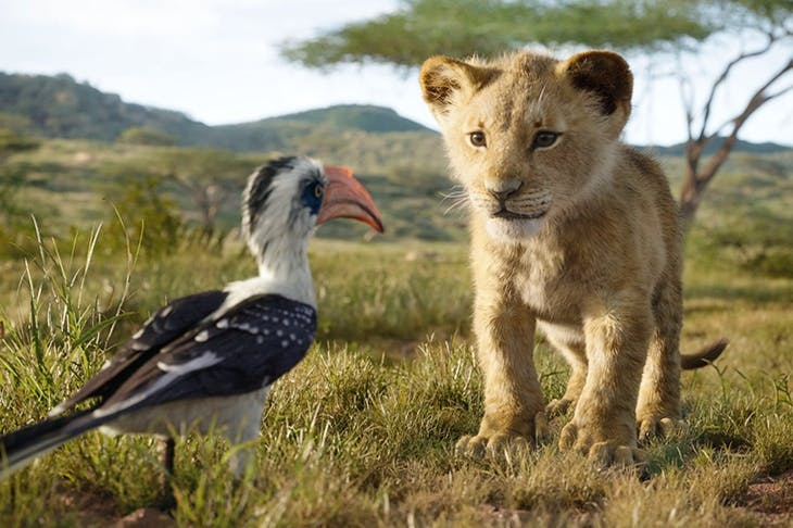 Animal magnetism: you'll want to reach into the screen, pluck Simba out and take him on to your lap for a cuddle