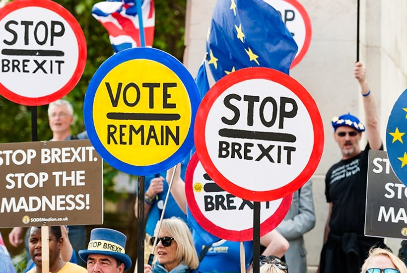 We Remainers aren't going away | The Spectator
