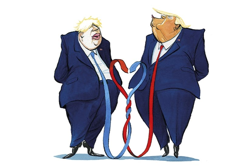 Image result for Cartoons trump boris